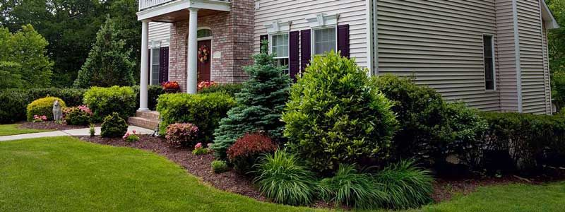 Landscaping And Lawn Care Services Driven Landscapes